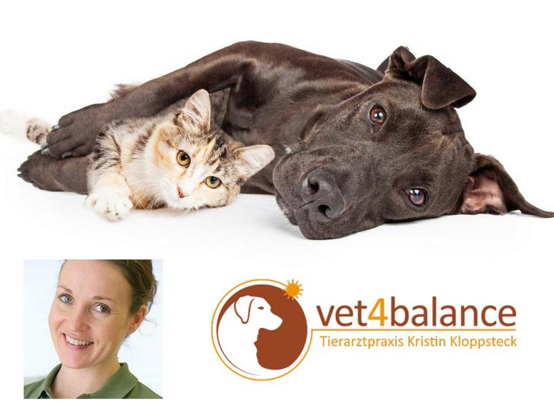 vet4balance_1_mobiler_tierarzt_tierheilpraktiker